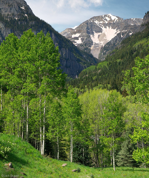 Camp Bird Road, Ouray, Colorado