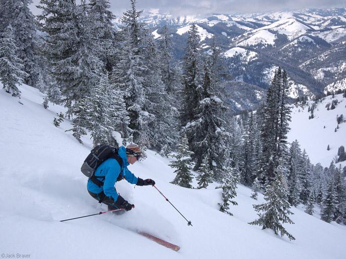 Skiing backcountry powder