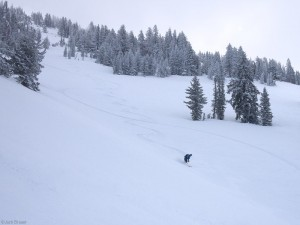 Powder turns