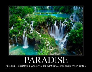 paradise non motivational poster