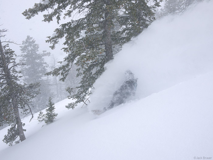 Powder Faceshot