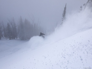 Snowboarding powder