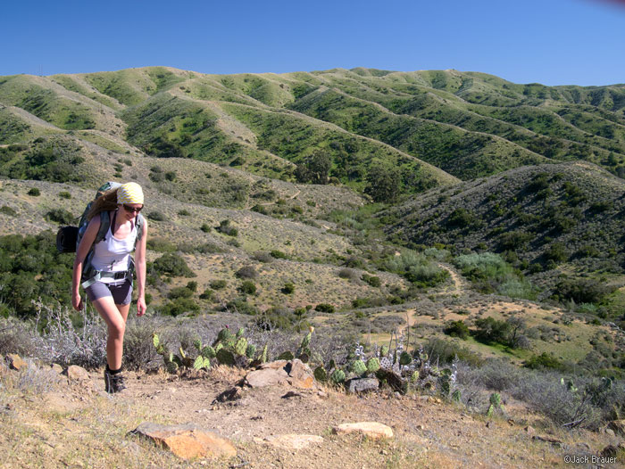 Trans Catalina Trail