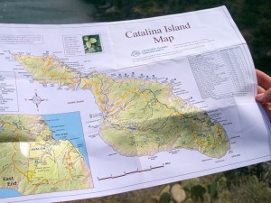 Trans Catalina Trail map