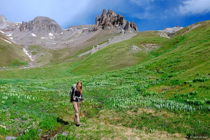 Green tundra in Colorado.