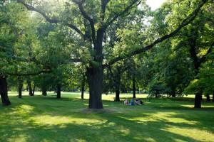 Park in Prague