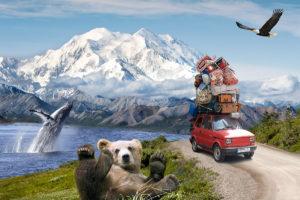 Alaska Road Tripping